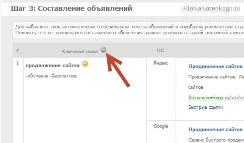 Повышение эффективности продвижения сайта за счет работы с контекстной рекламой Директа и Адвордса через SeoPult