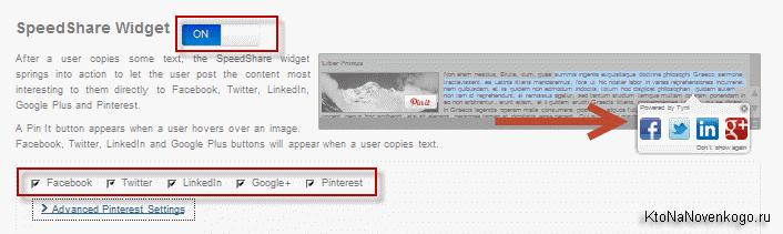 Настраиваем информацию, которая будет копировать вместе с текстом вашего сайта