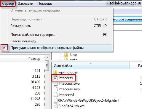 Как заставить Файлзилу принудительно отображать скрытые файлы