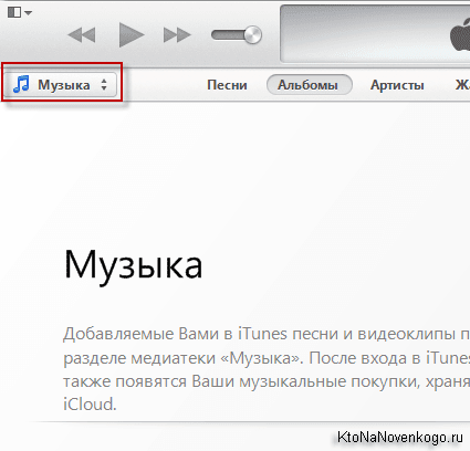Вкладка Музыка в iTunes
