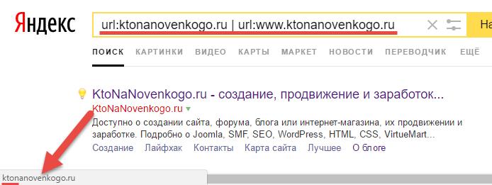 Какое зеркало сайта выбрал Яндекс - с WWW или без него