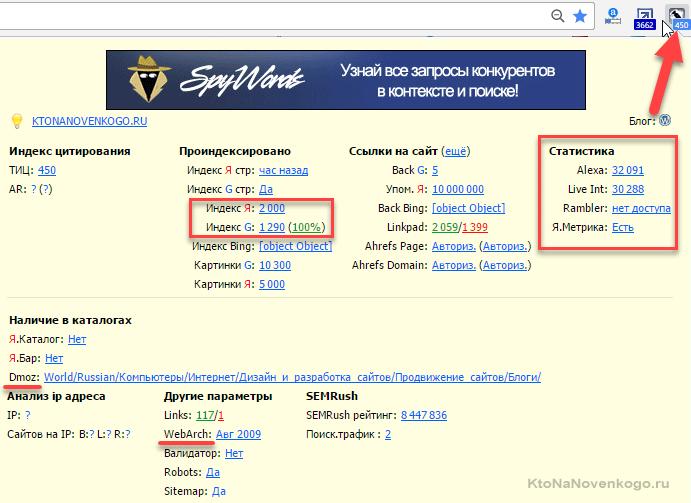 Проверяем страницы сайта в RDS баре