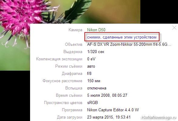 Яндекс Фотки