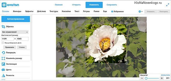 Автоисправление картинки в онлайн-редакторе