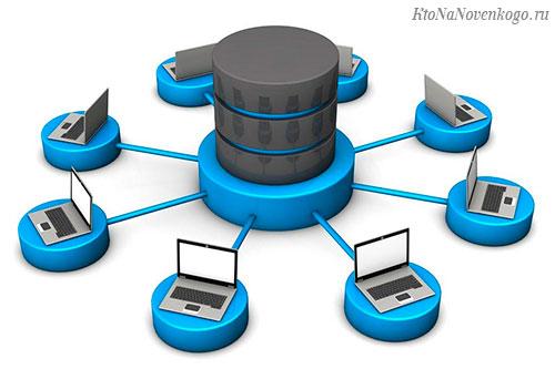 Что такое базы данных  —  виды  и примеры их использования