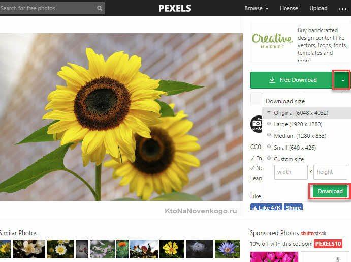 Бесплатный фотосток Pexels