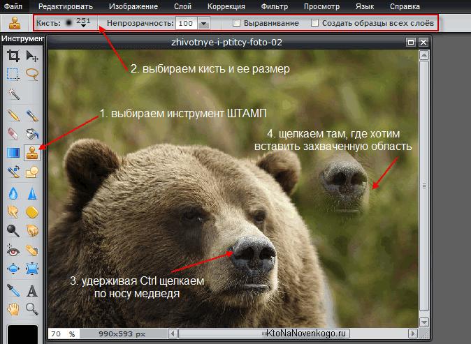 Инструмент Штамп в Pixlr Editor