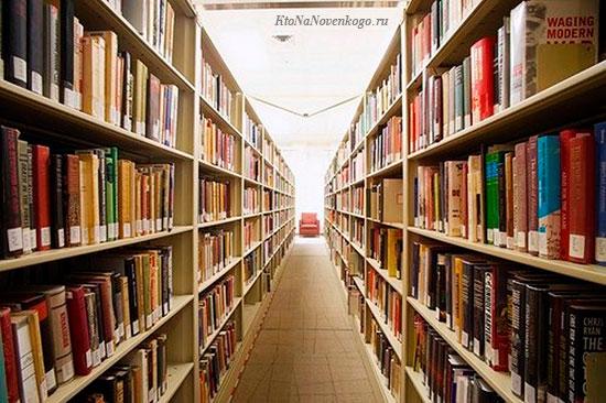 Показаны стеллажи библиотечного фонда