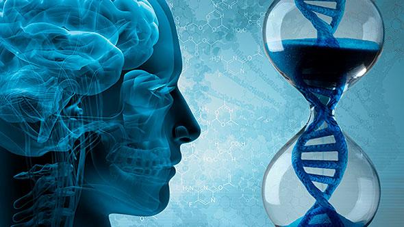 Песочные часы в форме ДНК, на которые смотрит человек