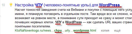 Настройка ЧПУ в WordPress и плагин RusToLat