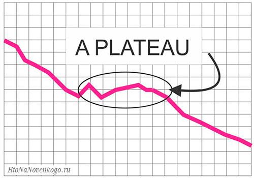Что такое плато и что означает выход на плато эпидемии коронавируса