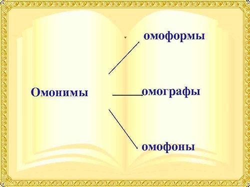 Омонимы подразделяются на омоформы, омофоны и омографы