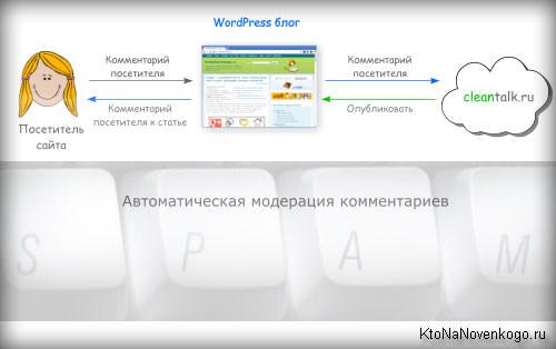 Автоматическое размещение статей в вордпресс размещение статей в Новочеркасск