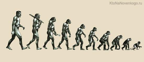 Из человека в обезьяну