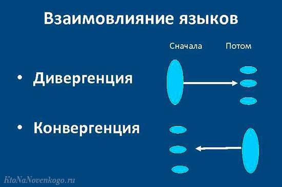 В лингвистике