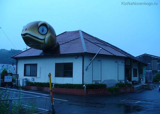 Дом-черепаха