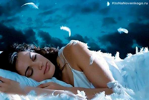 Фаза сна