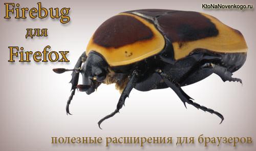 Огненный жук - Файер баг для браузера ФаерФокс