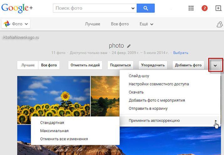 фото гугл
