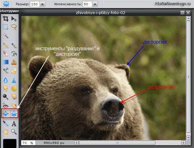 Эффекты бесплатного аналога Photoshop