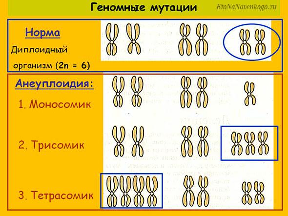 Геномные