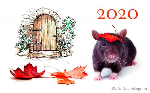 Как правильно встретить 2020 год — символ года и его значение по восточному календарю