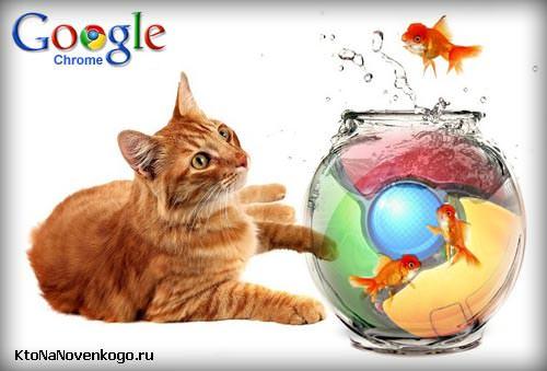 Гугл Хром — скрытый функционал и 10 огненных настроек браузера от Google, о которых не все знают