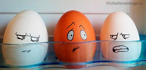 Ироничная дискриминация в холодильнике
