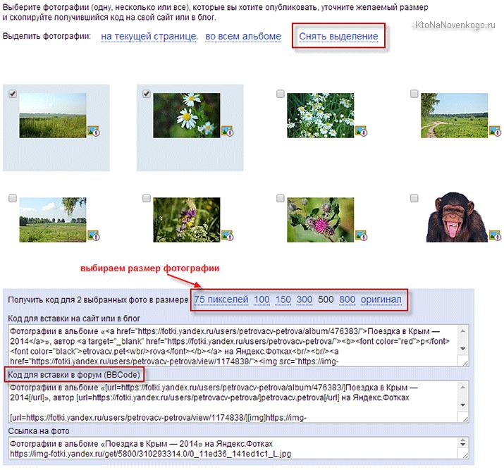 код для вставки фото