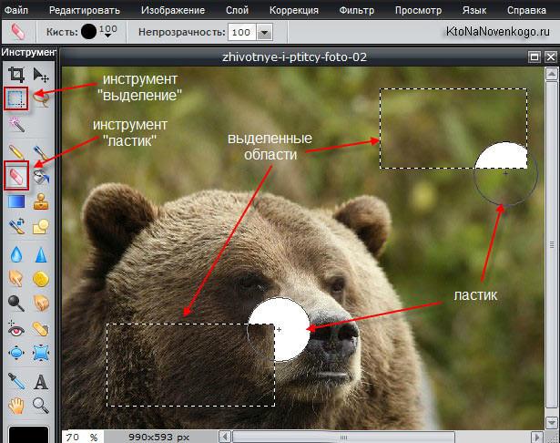 Коррекция фото в pixlr