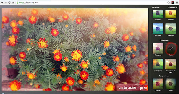 Выбираем эффекты онлайн обработки для картинок