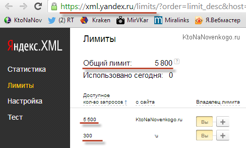 Сколько у меня лимитов в Яндекс XML