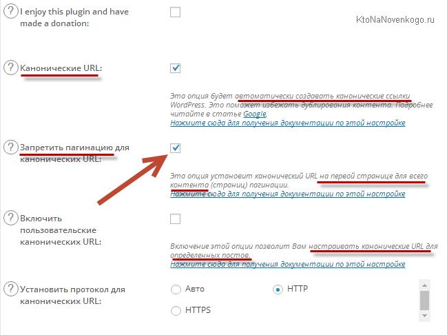 Настройка мета-тега Canonical в All in One SEO Pack