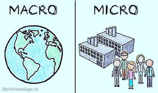 Микро и макро