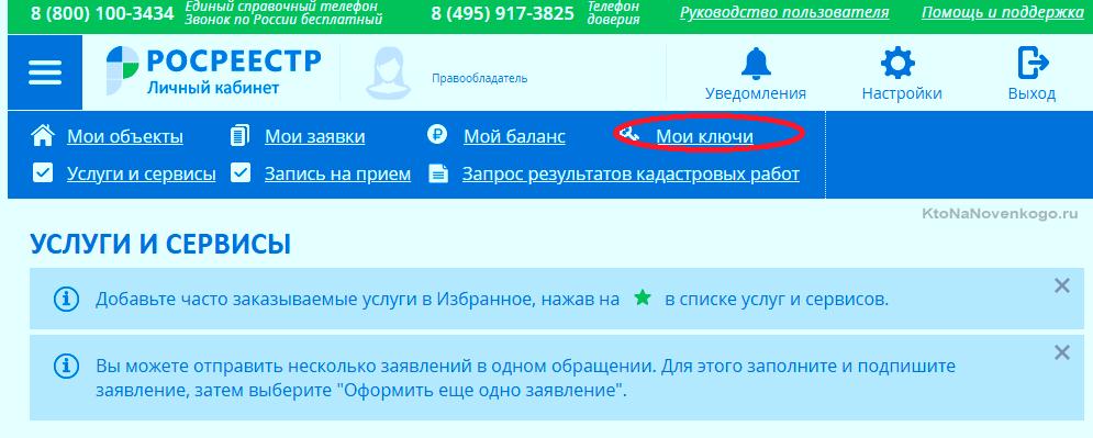 Выписка из ЕГРН онлайн - rosreestr.net