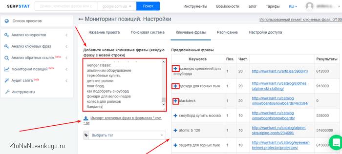 Сео анализ сайта в Serpstat