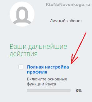настройка своего профиля в платежной системе Payza