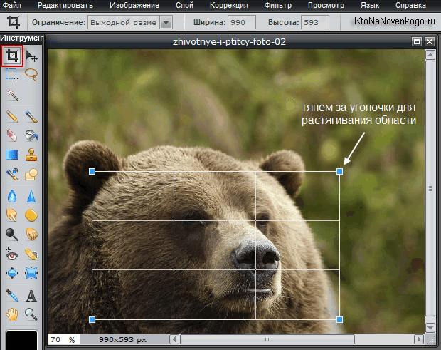 Кадрирование фоток в онлайн-редакторе Пикслер