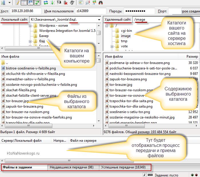 Окно программы Файлзила