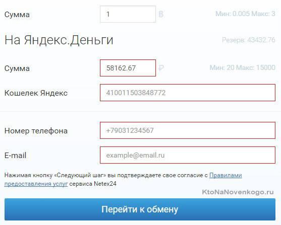 вывод bitkoin на яндекс деньги в Netex24
