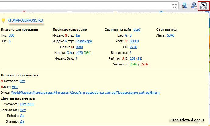 Как выглядит окно РДСБара при просмотре данных об открытом в браузере сайте