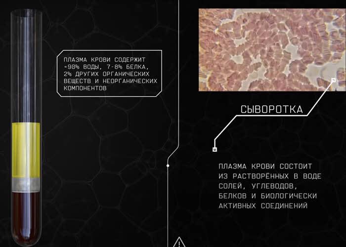 Как выглядит и из чего состоит плазма крови