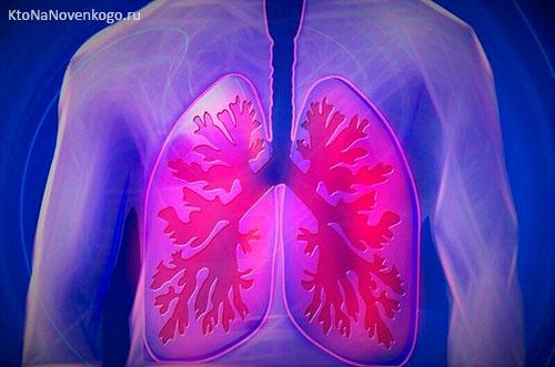 Пневмония симптомы и признаки у взрослого и у ребенка
