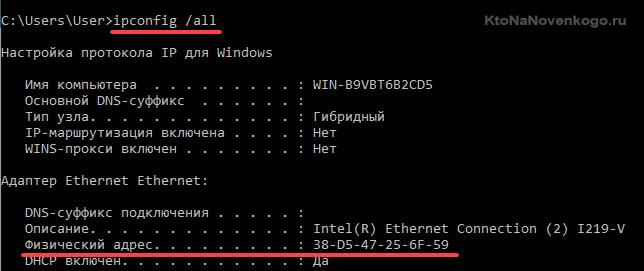 Как посмотреть MAC адрес сетевой карты компьютера