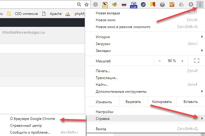 Как узнать версию вашего Гугл-браузера