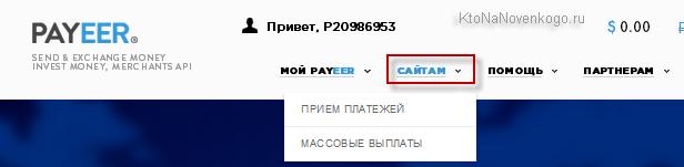 Прием платежей на сайте через Payeer