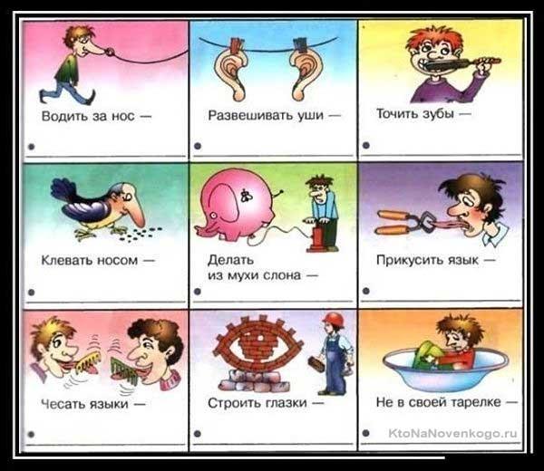 Примеры фразеологизмов в картинках