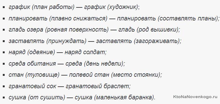 Примеры слов омонимов