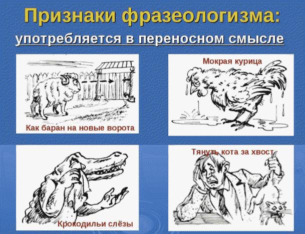 Примеры фразеологизмов