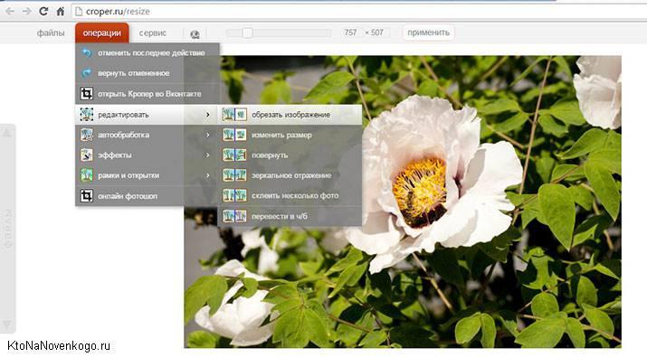 Онлайн-редактор cropper.ru